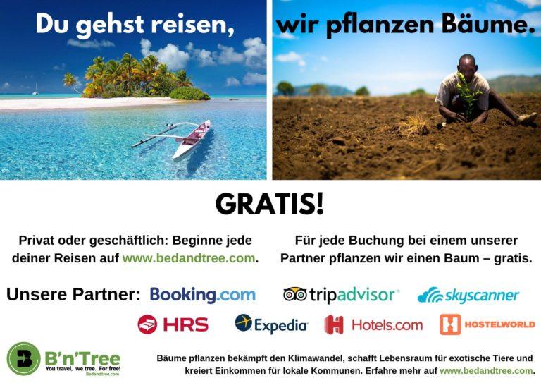 B'n'Tree – die Reiseplattform die Bäume pflanzt