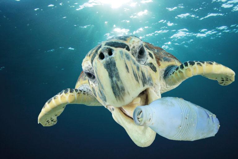 Tide Ocean Material – betreibt Upcycling mit Ozeanplastik