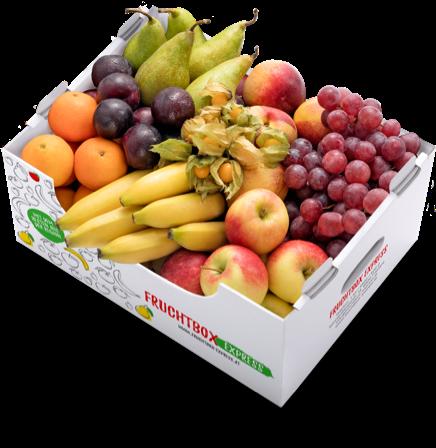 Fruchtbox Express: Neuer Lieferservice für frische Früchte an den Arbeitsplatz